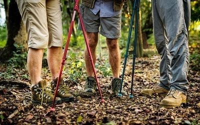 Best Trekking Poles for Backpacking 2019
