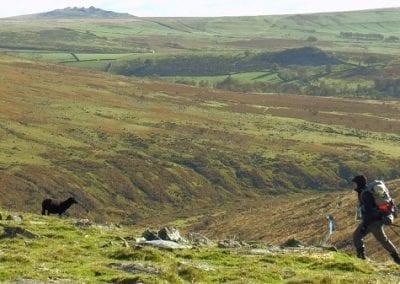 Dartmoor Hiking